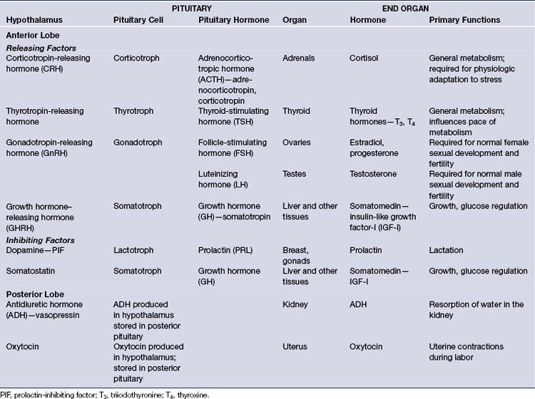Pituitary Tumors Diagnosis And Management Neupsy Key