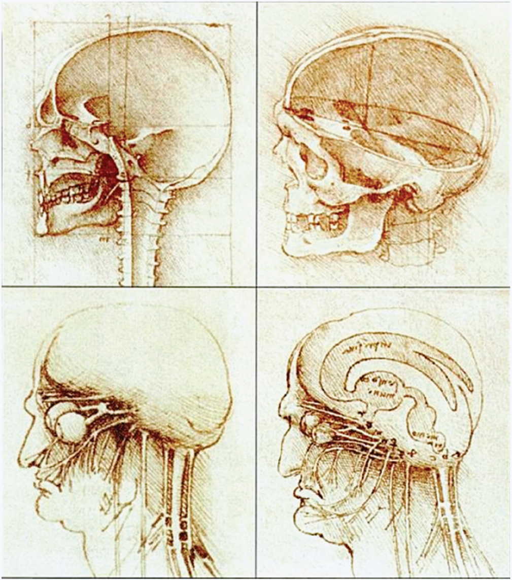 Surgery of the Posterior Cranial Fossa: Historical Aspects | Neupsy Key