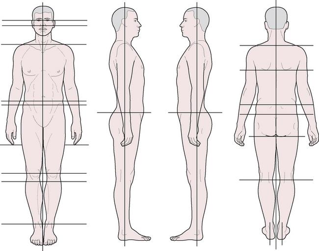 Postural assessment body diagrams electrical wiring diagram postural assessment charts asli aetherair co rh asli aetherair co simple skin assessment body diagram skin ccuart Choice Image