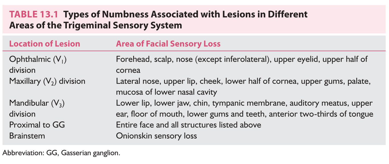 Approach to the Patient with Facial Numbness | Neupsy Key