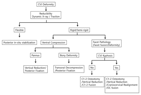 Algorithm shows decision-making pathways for the treatment of the CVJ deformity.